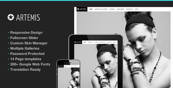 Photography WordPress | Artemis for Photography