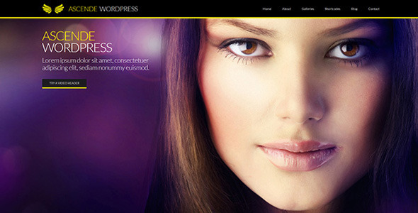 Ascende WordPress Responsive Photo & Video Gallery
