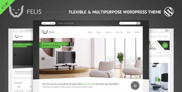 Felis - Flexible & Multipurpose Wordpress Theme
