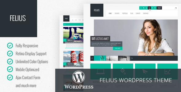 Felius - Responsive Multipurpose WordPress Theme