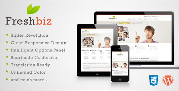 Freshbiz - Responsive Business WP Theme