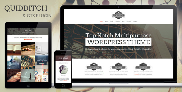 Quidditch - One Page WordPress Theme